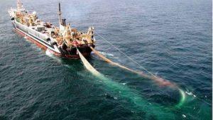 pesca reti a strascico