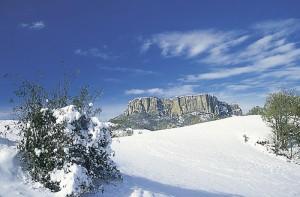 neve_montagna