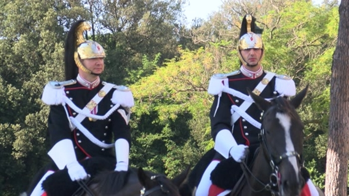 cavalli carabinieri a cavallo corazzieri