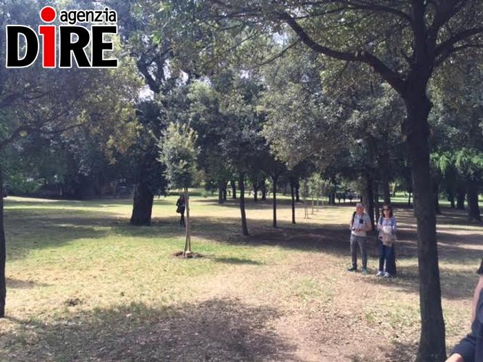 alberi srudentesse morte in spagna