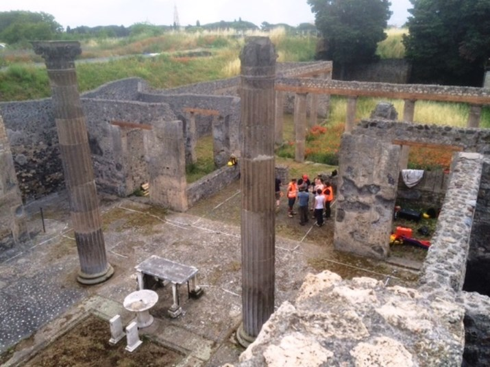 Risultati immagini per nuovi scavi a pompei