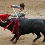 catalogna-torna-la-corrida