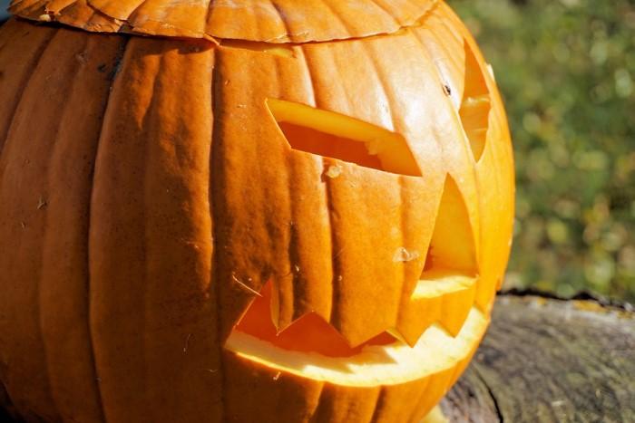 Zucca Di Halloween Piu Grande Del Mondo.Il Caldo Spegne Le Zucche Di Halloween La Produzione Cala Del 10 Dire It