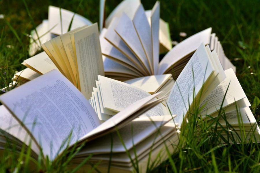 Leggere fa bene e il Parlamento lo stabilisce per legge