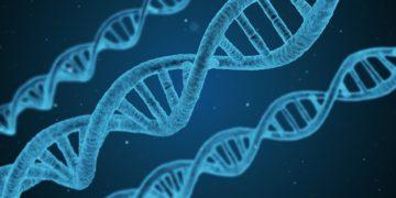 dna malattie genetiche