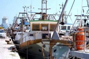 pesca peschereccio