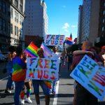 pride new york18