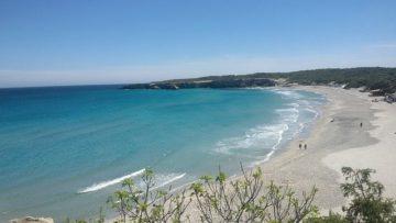 """Consumo consapevole e natura, Ami: """"5 consigli per un'estate"""