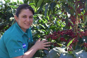 VIDEO | Honduras, contro caldo e covid il caffè ha un alleato: le Ong