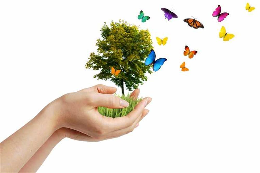 biodiversita2