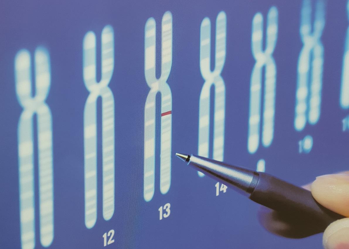 tumore-ovarico-gene