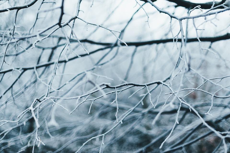 gelo_inverno_neve_freddo