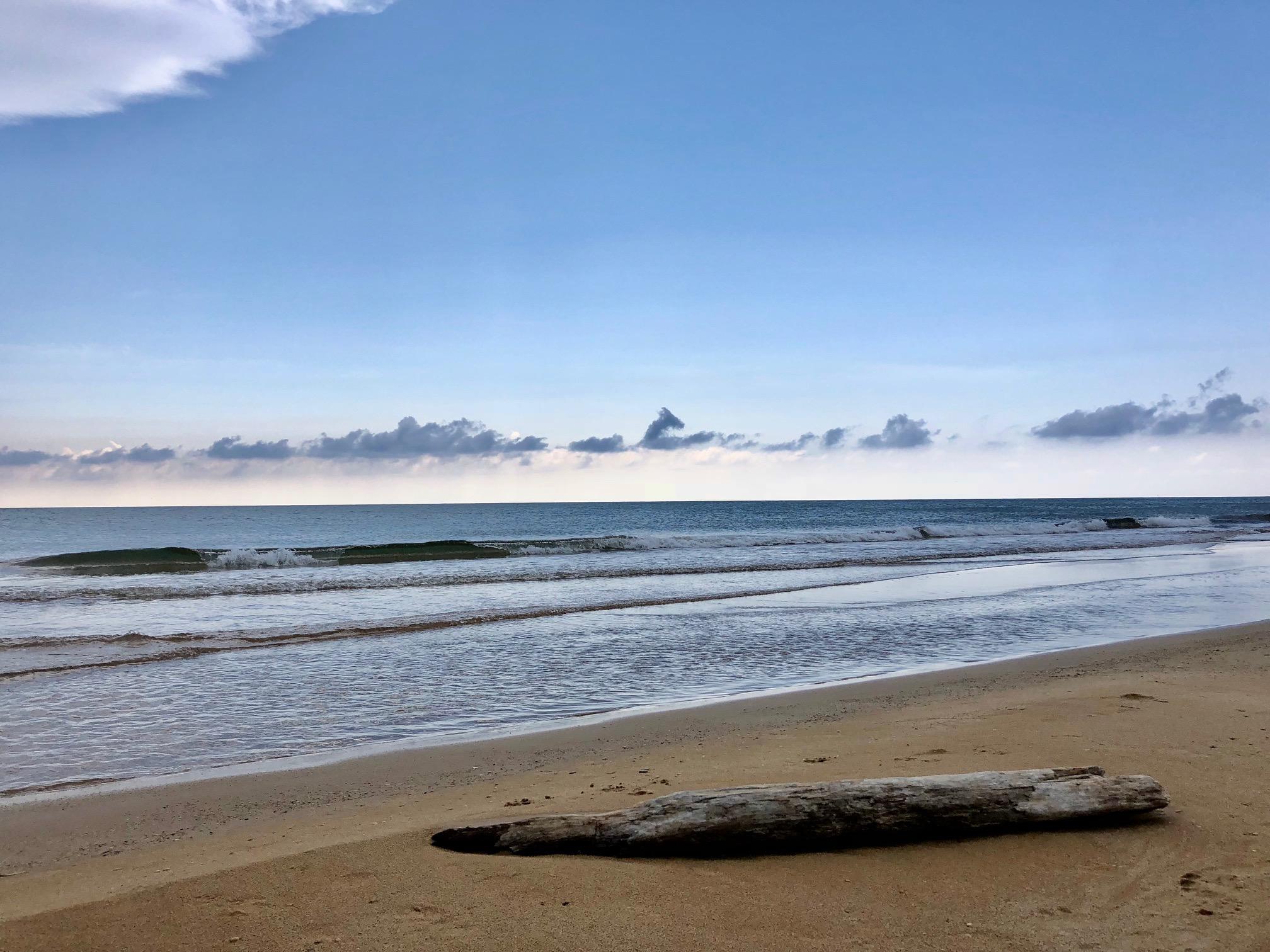 """Coronavirus, Siaaic: """"Aria di mare fa bene, anche se con ingressi ridotti  in spiaggia"""" - DIRE.it"""