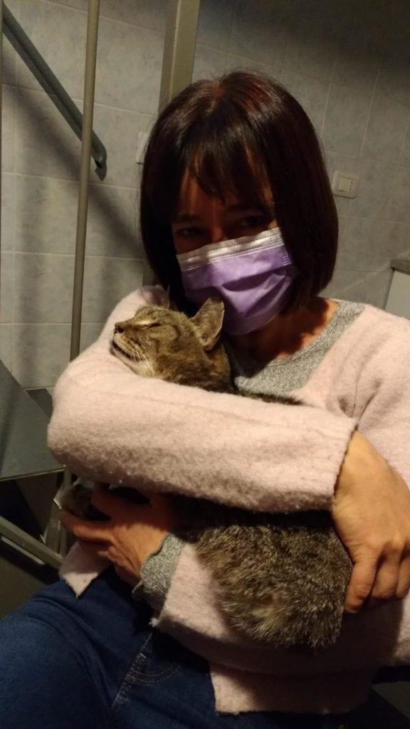Ritrova il suo gatto dopo 8 anni grazie ad un post dell'Enpa su Facebook. La storia di Mandarino e Monica, un amore mai dimentic