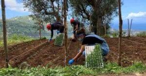 Agricoltura, la resistenza degli under 35: storia di Valentina, 'bio' imprenditrice