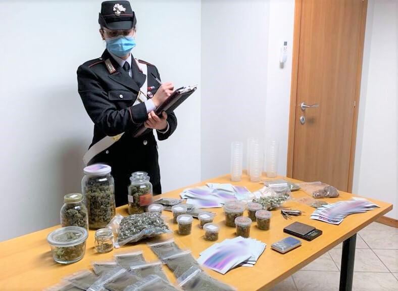 distributore cannabis bologna