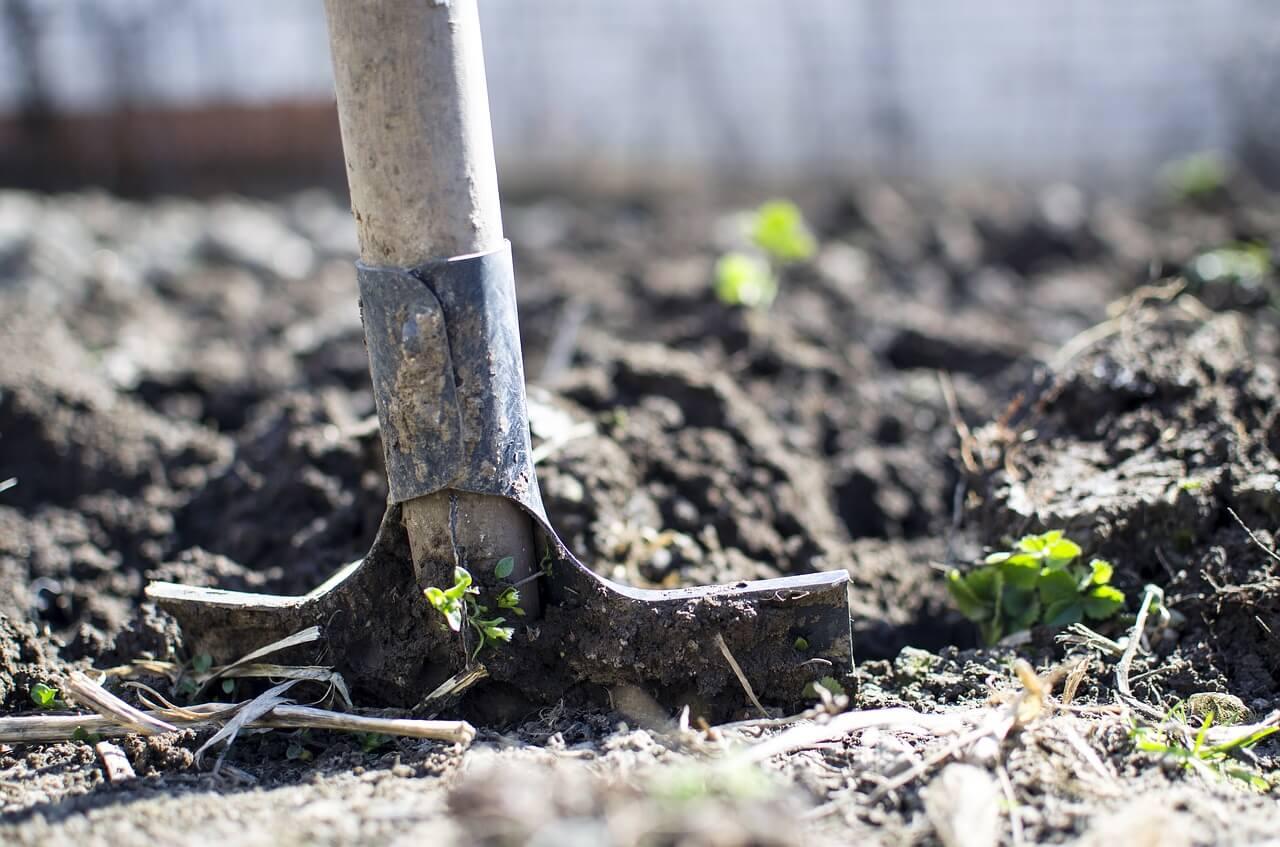 scavi scavare pala