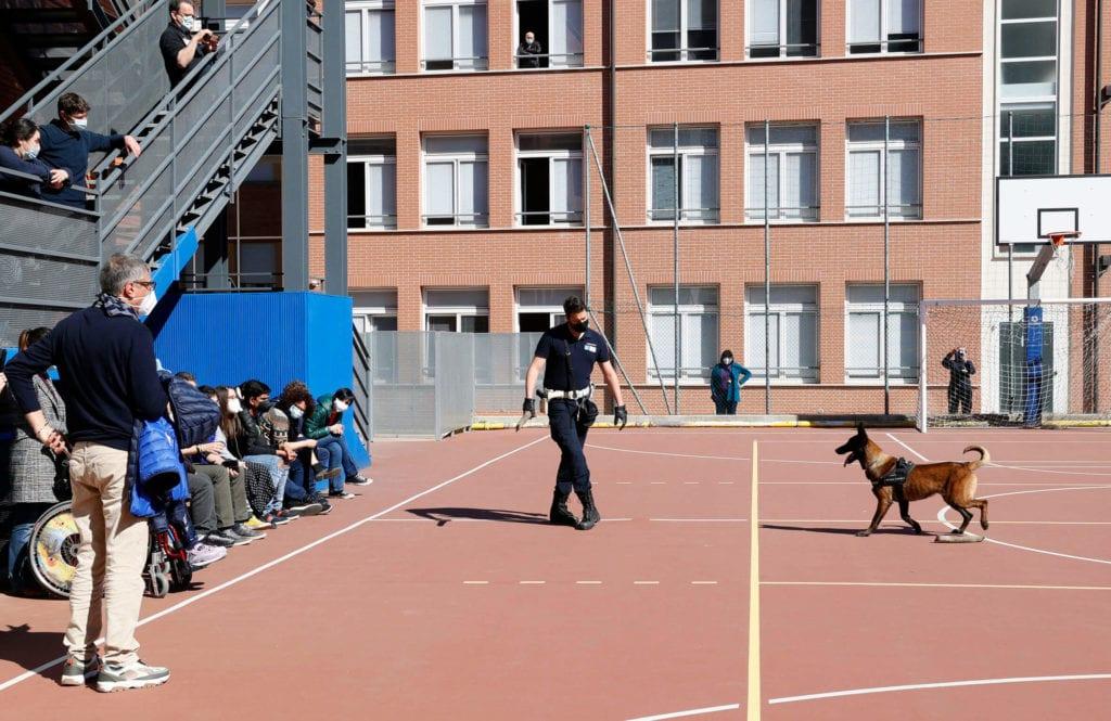 cane poliziotto pit modena unità cinofila