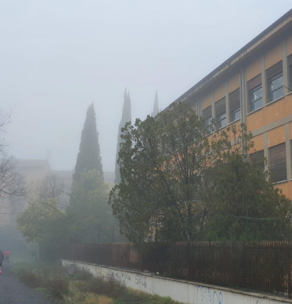 scuola piccinini via fiorentini