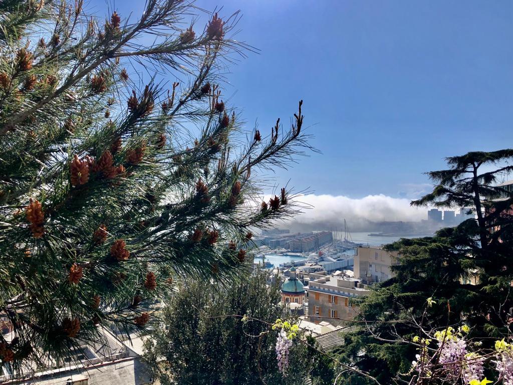 Genova nebbia caligo