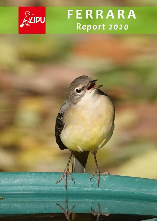 report lipu ferrara uccelli
