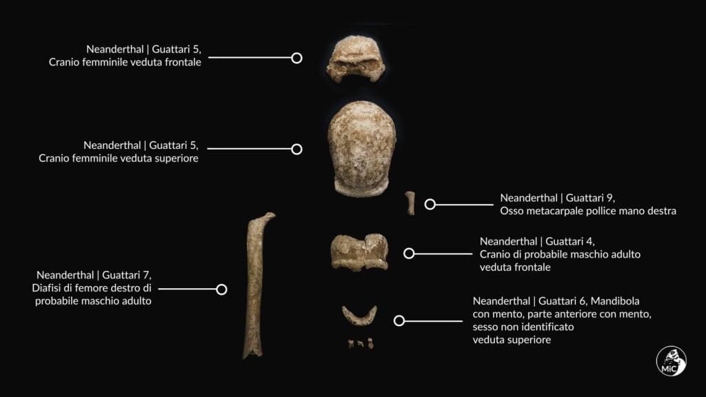 neanderthal circeo