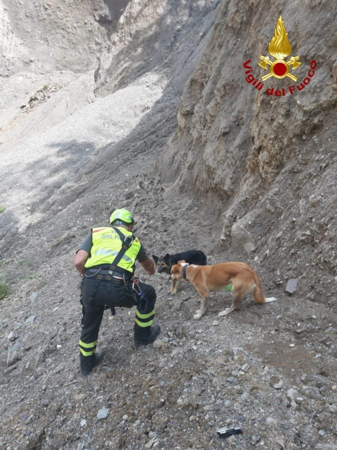 cani salvati a sauris