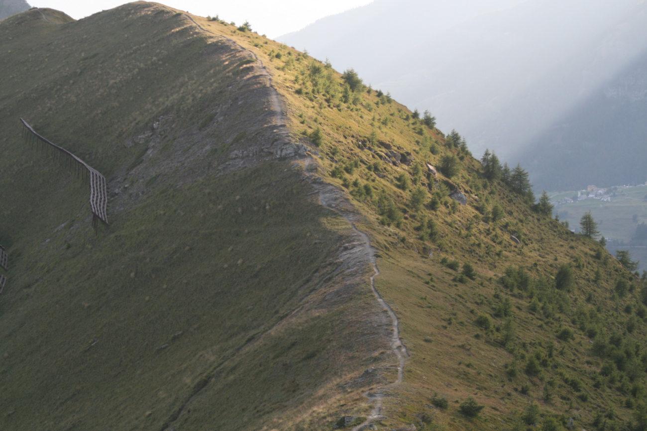 crinale montagna verde
