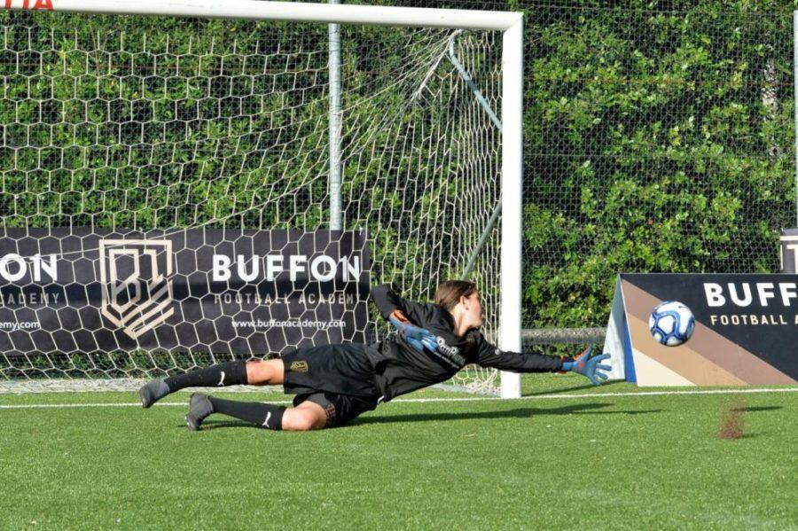 Buffon Academy