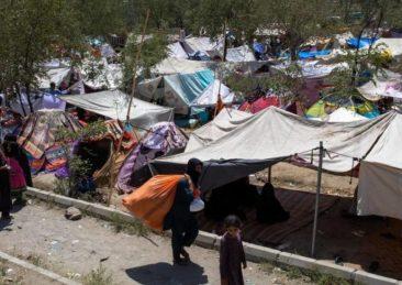 sfollati afghanistan kabul