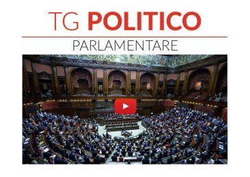 Copertina_Tg_Politico_Parlamentare