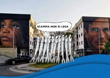 Sardine_scampia-1
