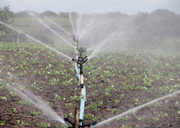 agricoltura_irrigazione