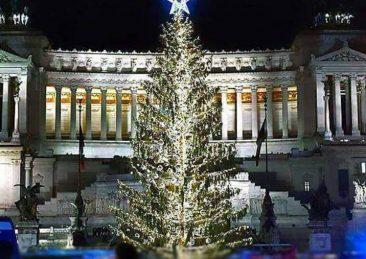 albero-piazza-venezia