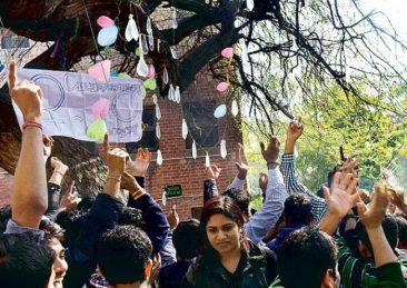 albero-vergine_hindu-college-1