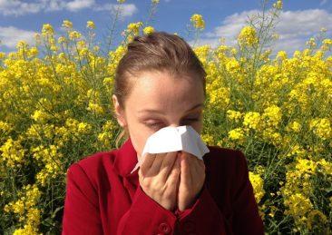 allergia02