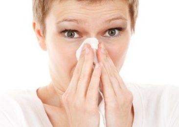 allergia2