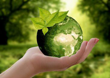 ambiente_natura_mondo_riciclaggio
