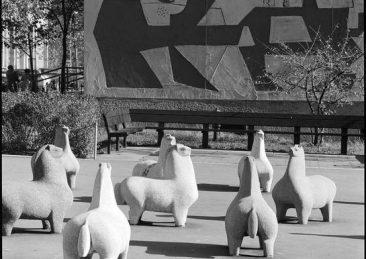 cavalli nivola playground new york