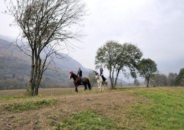 cavallo_ippovia