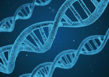 dna-malattie-genetiche