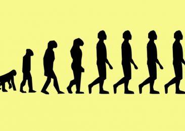 evoluzione-3