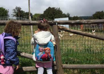 fattoria_Aspromonte-1