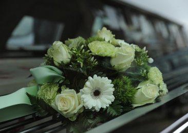 flowers-4839339_640