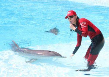 gessica_notaro-delfino