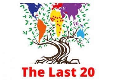 last 20