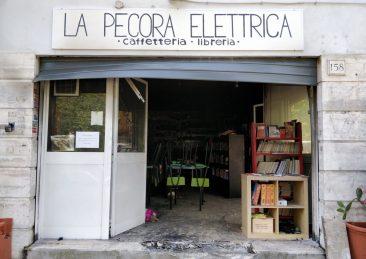lbreria_pecora-elettrica-5