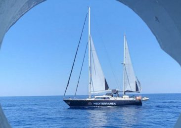 mediterranea-alex