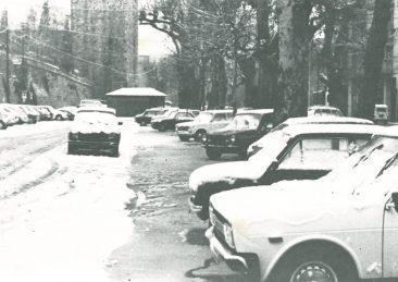 neve-3-novembre-1980