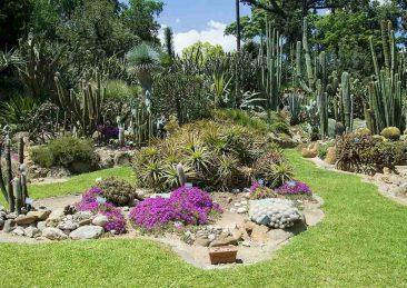 orto botanico napoli-min